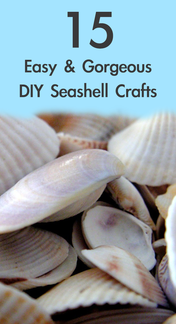 15 Easy and Gorgeous DIY Seashell Crafts