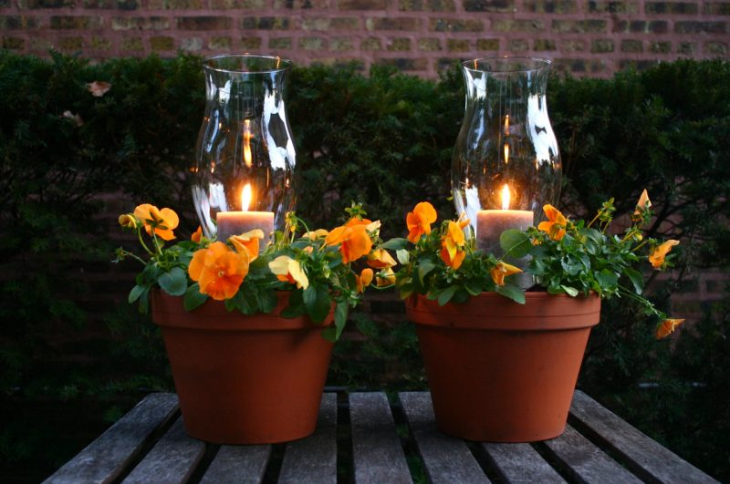 Potted Candle Planters