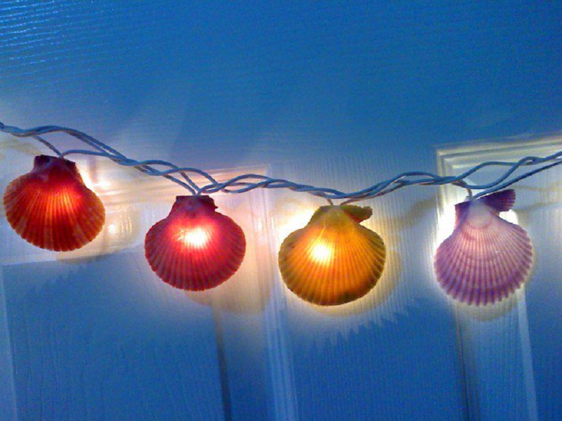 Seashell LED lights