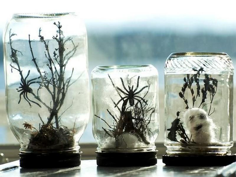 Spooky Terrarium Jars