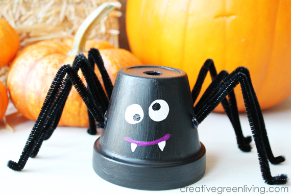 Friendly Flower Pot Spider
