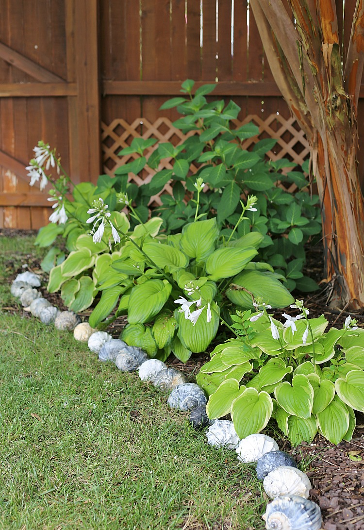 Seashells as Garden Edging