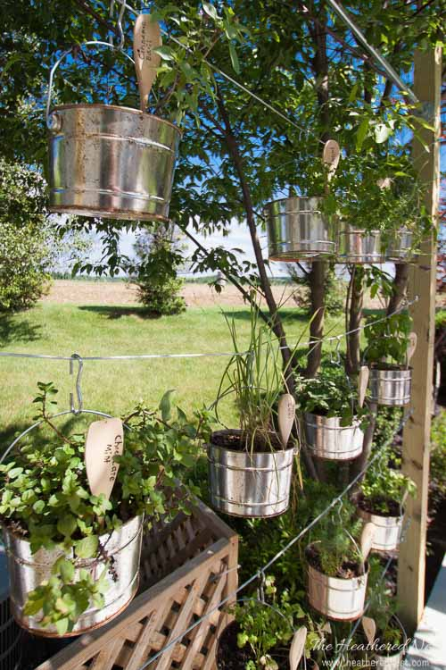 Galvanized Wire and Buckets Vertical Garden