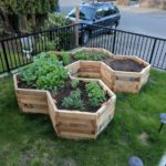 Hexagonal Garden Beds
