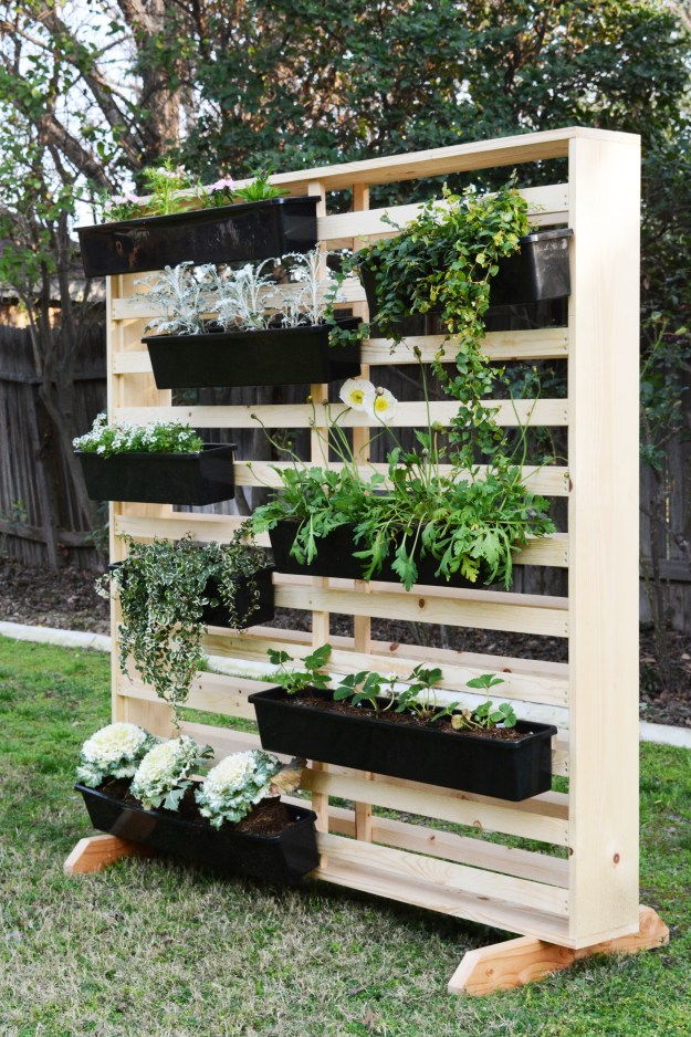 Living Wall with Moveable Planters