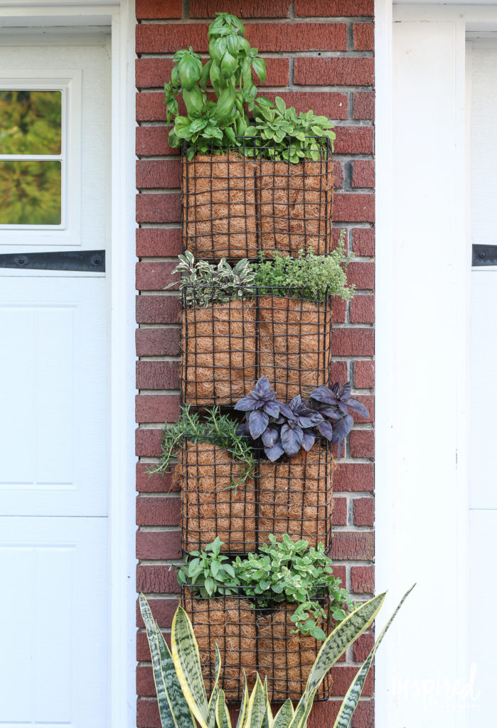 Vertical Herb Garden From Hanging File Organizer