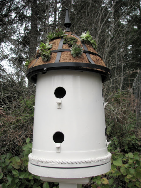 Adorable Bird House