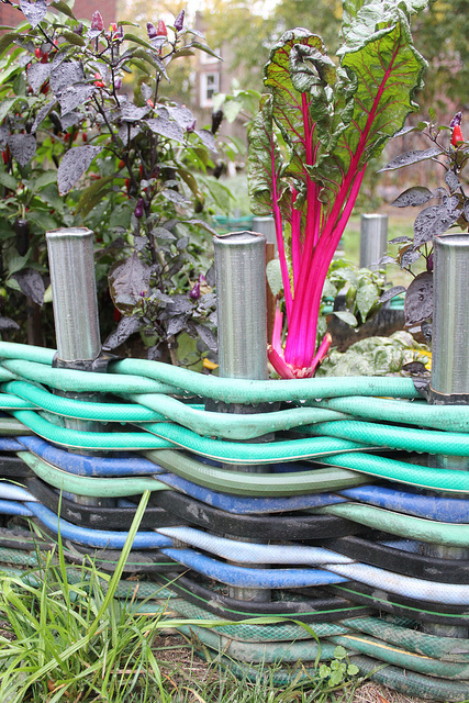 Garden Edging from Old Garden Hoses