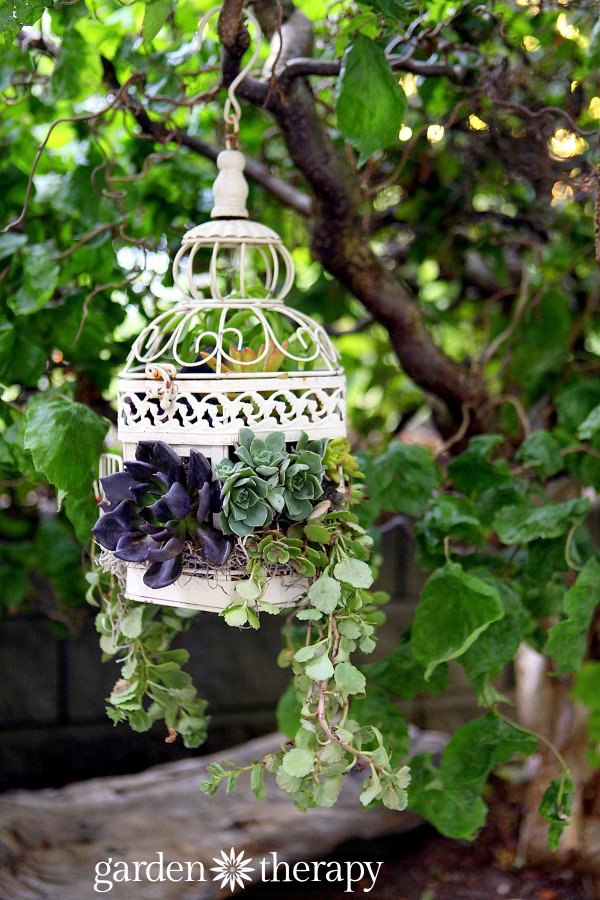 Birdcage Hanging Planter