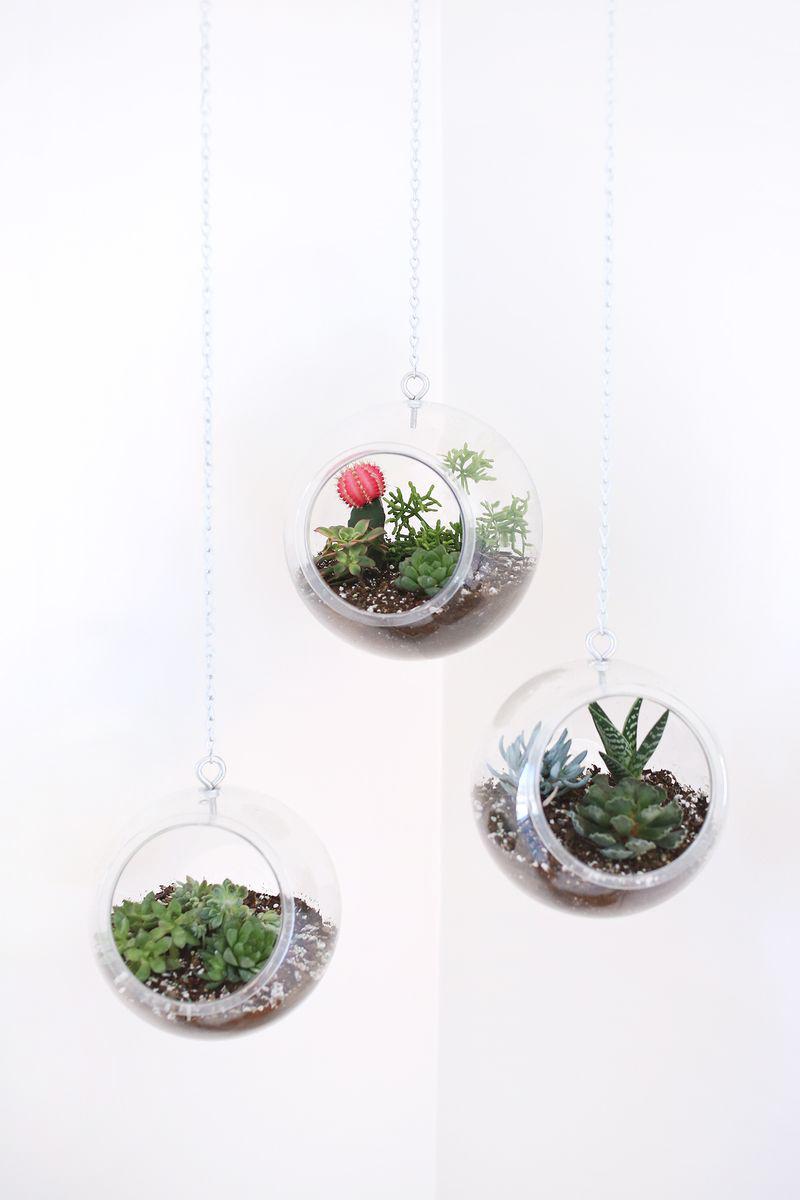 Plastic Fishbowl Hanging Planters
