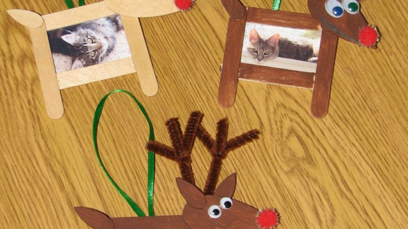 Reindeer Photo Frame Ornaments